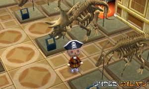 Museum Animal Crossing New Leaf