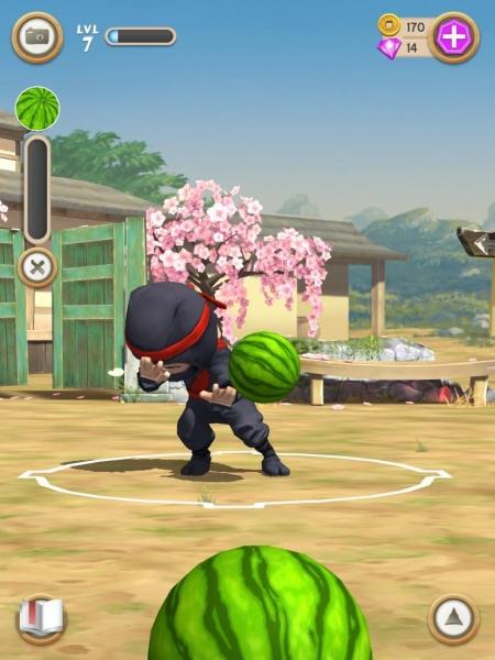 Ninja Watermelon Game Watermelon at The Ninja