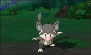 Alolan Rattata Released