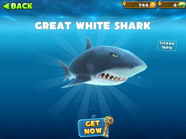 Hungry Shark Evolution Megalodon   www.pixshark.com - Images Galleries With A Bite!